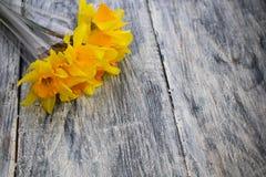 Fondo di legno grigio e invecchiato ecologico immagine stock