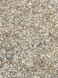Fondo di legno grigio di struttura dei chip Copertura al suolo sicura fotografia stock libera da diritti