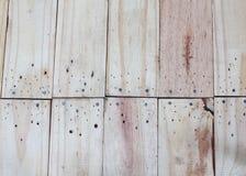 Fondo di legno leggero di struttura della parete fotografia stock