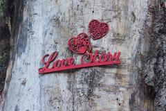 Fondo di legno romantico con la storia di amore dell'iscrizione Immagine Stock Libera da Diritti