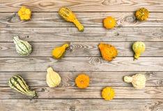Fondo di legno rustico Autumn Thanksgiving della zucca Fotografie Stock Libere da Diritti
