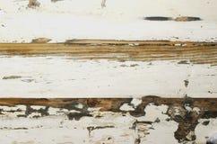 Fondo di legno stagionato bianco, fuoco selettivo Fotografie Stock Libere da Diritti