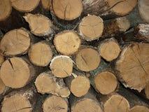 Fondo di legno di struttura dei ceppi fotografie stock libere da diritti