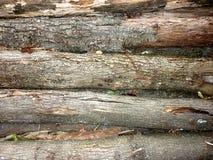 Fondo di legno di struttura dei ceppi fotografia stock libera da diritti