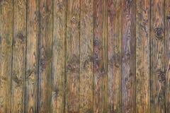 Fondo di legno di struttura di marrone di legno di pino fotografia stock libera da diritti