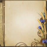 Fondo di lerciume con i wildflowers e le spighette Fotografia Stock Libera da Diritti