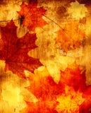 Fondo di lerciume con le foglie di autunno Fotografie Stock Libere da Diritti