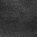 Fondo di lerciume del nero scuro di struttura di legno bruciata fotografie stock libere da diritti