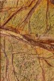 Fondo di macro di struttura del marmo di Bidasar Brown Fotografie Stock