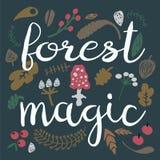 Fondo di magia della foresta Immagini Stock Libere da Diritti