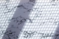 Fondo di marmo con ombra, concetto moderno della tavola della tendenza organica naturale fotografia stock