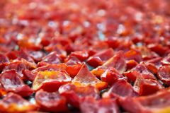Fondo di molti pomodori rossi che si asciugano all'aperto alla luce solare Immagini Stock Libere da Diritti