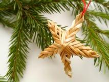 Fondo di Natale con il ramo di albero dell'abete, stella fotografia stock