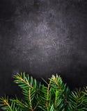 Fondo di Natale con l'albero di abete sul bordo nero d'annata con Fotografie Stock Libere da Diritti