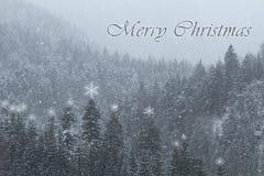 Fondo di Natale con la montagna di inverno coperta in neve Caduta della forte nevicata sui pini fotografia stock