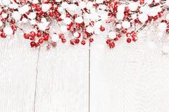 Fondo di Natale con le bacche Immagini Stock