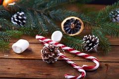 Fondo di Natale dei rami e dei bastoncini di zucchero Immagini Stock