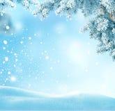 Fondo di Natale di inverno con il ramo di albero dell'abete Fotografia Stock Libera da Diritti