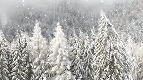Fondo di nevicata di Natale del paese delle meraviglie di inverno video d archivio