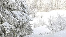 Fondo di nevicata di Natale del paese delle meraviglie di inverno archivi video