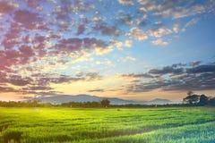 Fondo di nuvoloso Fotografia Stock