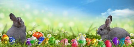 Fondo di Pasqua con le uova di Pasqua ed i coniglietti di pasqua Fotografia Stock