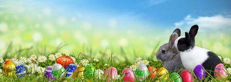 Fondo di Pasqua con le uova di Pasqua ed i coniglietti di pasqua Immagini Stock Libere da Diritti