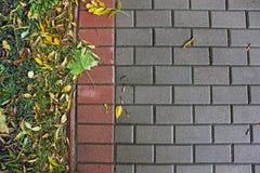 Fondo di pavimentazione delle mattonelle Autunno fotografie stock libere da diritti