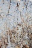Fondo di pietra bianco incrinato solcato Fotografia Stock