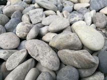 Fondo di pietra del ciottolo, ciottolo grigio bianco della roccia del fiume naturale all'aperto, pietre rotonde struttura, materi Immagine Stock Libera da Diritti
