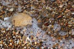 Fondo di pietra del ciottolo con la schiuma del mare Fotografia Stock Libera da Diritti