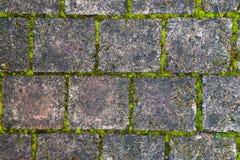 Fondo di pietra del percorso della passeggiata del blocco Fotografie Stock Libere da Diritti