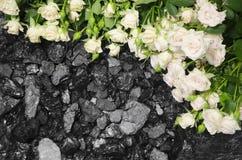 Fondo di pietra delle rose bianche del carbone Fotografia Stock Libera da Diritti