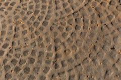 Fondo di pietra di rame del modello del pavimento Immagini Stock