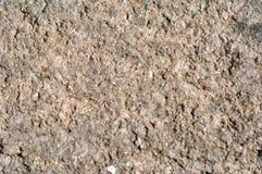Fondo di pietra naturale di struttura della ghiaia Immagine Stock