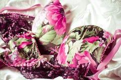 Fondo di pizzo femminile della biancheria intima Fotografia Stock