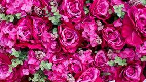 Fondo di plastica del fiore Fotografia Stock Libera da Diritti