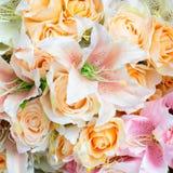 Fondo di plastica del fiore Immagini Stock