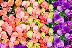 Fondo di plastica del fiore Fotografie Stock Libere da Diritti