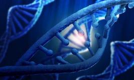 Fondo di ricerca del DNA Fotografie Stock Libere da Diritti