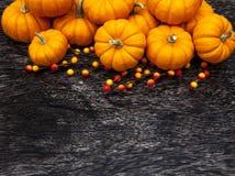 Fondo di ringraziamento della zucca di autunno Immagini Stock Libere da Diritti