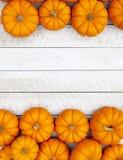 Fondo di ringraziamento della zucca di autunno Fotografie Stock Libere da Diritti