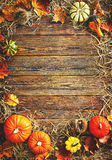 Fondo di ringraziamento o del raccolto con le zucche e la paglia fotografia stock