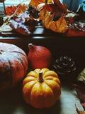 Fondo di ringraziamento: zucche, foglie di autunno, arance e coni su fondo di legno Fotografie Stock
