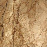 Fondo di struttura del marmo di Brown, Fotografia Stock