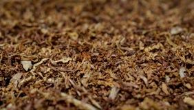 Fondo di struttura del tabacco Fotografie Stock Libere da Diritti