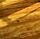 Fondo di struttura del tappeto Immagine Stock Libera da Diritti