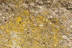 Fondo di struttura della parete di pietra immagine stock