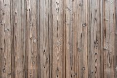 Fondo di struttura della plancia di legno di pino immagini stock libere da diritti