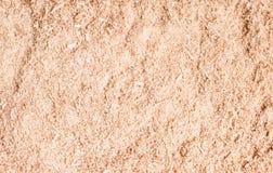 Fondo di struttura della polvere di legno o della segatura Primo piano di legno del fondo della segatura Struttura del pavimento  immagine stock